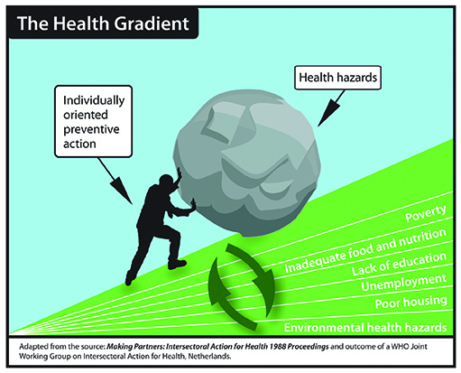 TheHealthGradientrevised